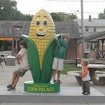 Hanging with the corn